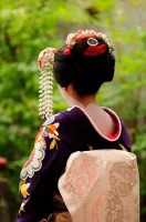 Geisha's head dress, Kyoto, Japan